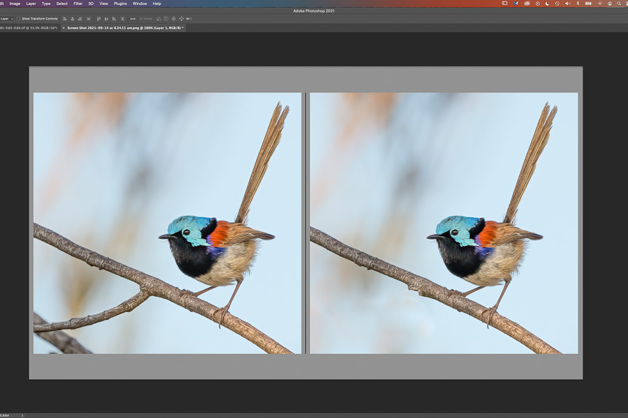 The Basics of Cloning and Healing In Photoshop